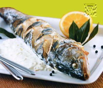 Fish tebese